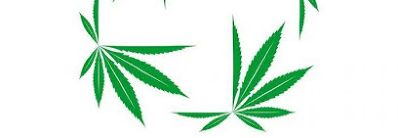 Tops Cannabis
