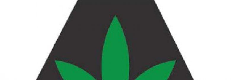 The Peak – Medical Marijuana Dispensary Noble
